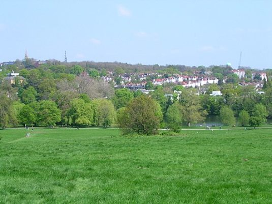480px-Hampstead_Heath_7