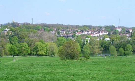Hampstead_Heath_550x330