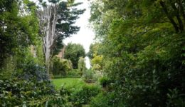 garden-4-resized-min