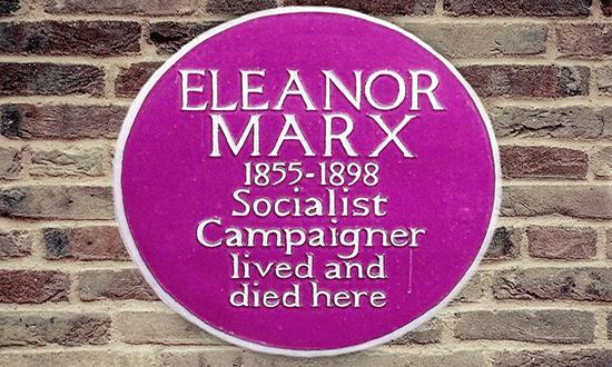 pink-plaque