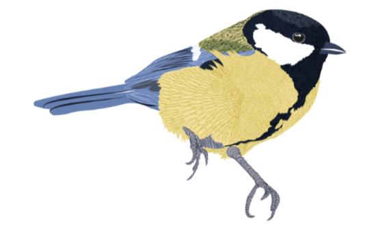 aviary-event