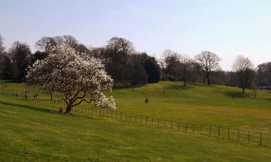 hampstead-heath-three-walks