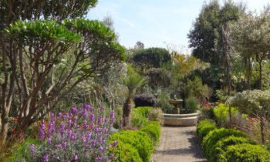 monas-garden-feature